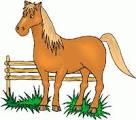 horsebyfence