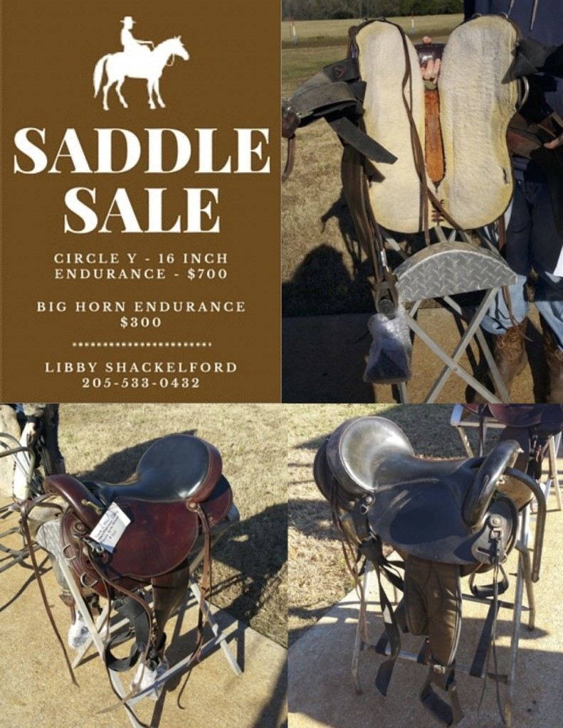 Carouselobreeds.com Saddle Sale Flyer