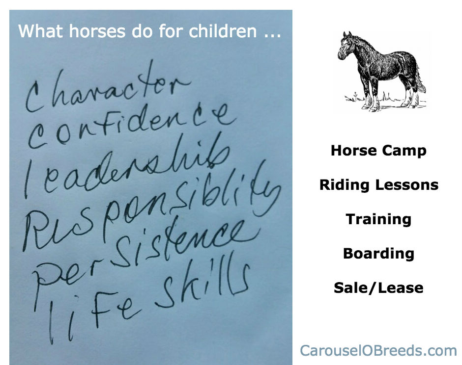 CarouseloBreeds.com Virtues of Horses